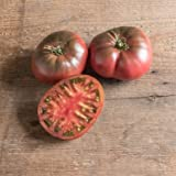 David's Garden Seeds Tomato Beefsteak Black Krim SL2063 (Black) 50 Non-GMO, Organic, Heirloom Seeds