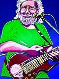 JERRY GARCIA PRINT POSTER guitar cd lp record album vinyl grateful dead jam band american beauty
