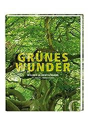 Grünes Wunder: Wälder in Deutschland