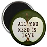 Green ALL YOU NEED IS LOVE Beatles Music Apple 2.25 inch Fridge Magnet