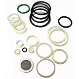 Smart Parts Ion Seal Kit - OEM O-ring Kit