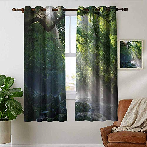 petpany Bathroom Curtains Rainforest,Stream in The Jungle Stones Under Shadows of Trees Sunlight Mother Earth Theme,Green White,Room Darkening Waterproof Curtains for Bathroom -