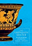 img - for The Sarpedon Krater: The Life and Afterlife of a Greek Vase book / textbook / text book