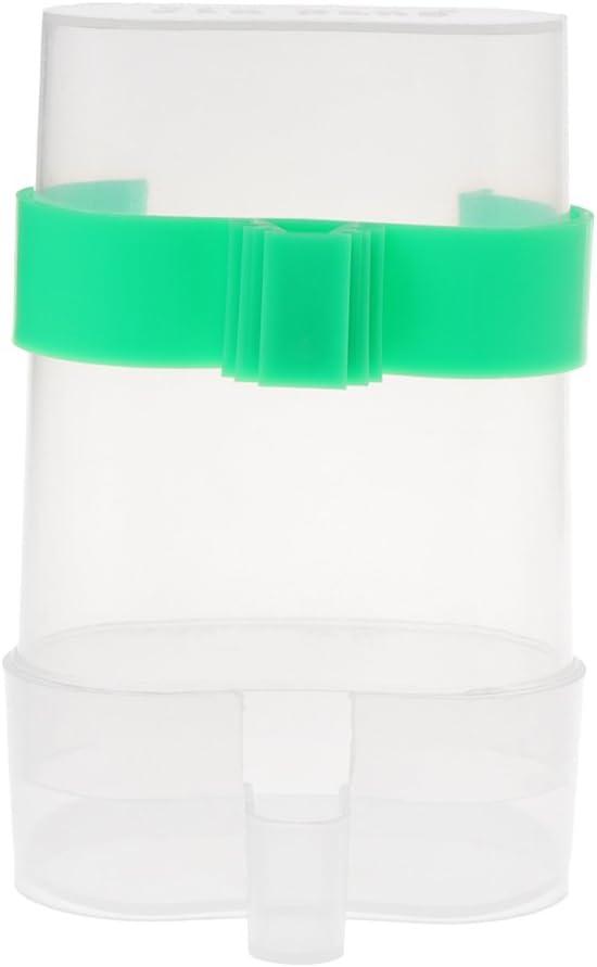 jiamins–Comedero de pájaros automático bebedero para pájaros comedero pájaros plástico Durable, transparente