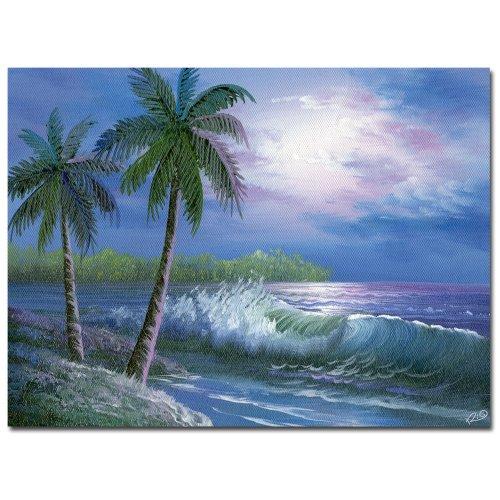 Moonlight in Key Largo by Master s Art, 35×47-Inch Canvas Wall Art