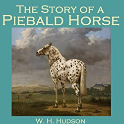 The Story of a Piebald Horse