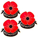 3 PCS Remember Memorial Day Gifts Flower Red Black Poppy Brooch Pin Lest We Forget