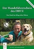 Der Hundeführerschein des DHVE: Den Hund im Alltag sicher führen