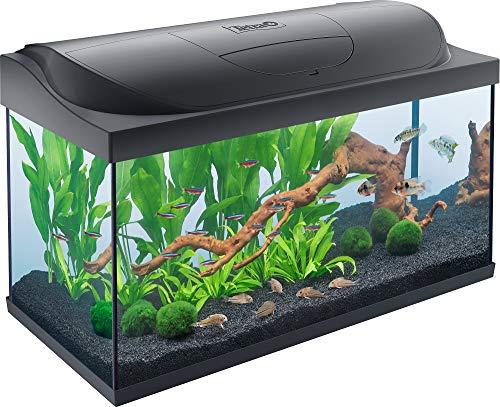 Tetra Starter Line LED Acuario 105 L – Juego completo que incluye iluminación LED, un acuario estable para principiantes…