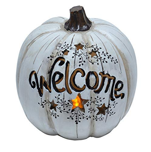 ReLive 7.5 Inch LED Lighted Fall Resin White Welcome Pumpkin Decor ()