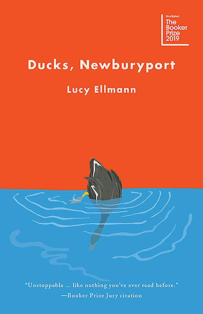 Image result for Ducks, Newburyport: A Novel by Lucy Ellmann