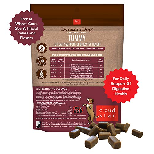 Cloud Star Dynamo Dog Digestive Support Soft Chew Treats, Grain Free with Pumpkin, Ginger, & Probiotics