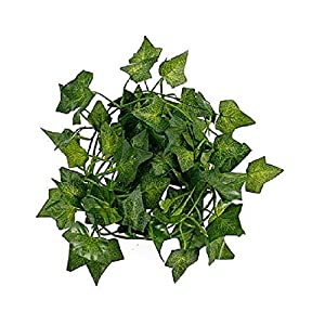 A-Decor 84 ft-12 Pack Artificial Ivy Vine Hanging Garland Fake Foliage Flowers Leaf Plants Home Garden Greenery Life-Like English Poison Ivy Wedding Party Strands Indoor Outdoor Wall Decor, Green 3