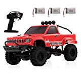 Goolsky RGT 136240 1/24 RC Crawler 2.4G 4WD 15KM/H RC Off-Road Buggy Car with 3 Battery