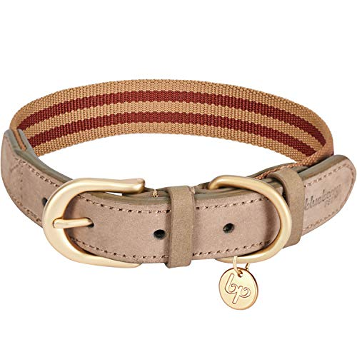 Blueberry Pet 8 Colors Polyester Fabric Webbing and Soft Genuine Leather Dog Collar in Red and Brown, Large, Neck 18