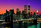 Manhattan New York City 8 pieced photo wallpaper (366cm x 254cm) + 1 pack tesa powerstrips, 20 pieces