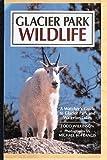 Glacier Park Wildlife, Todd Wilkinson, 1559711442