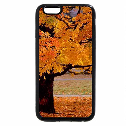 iPhone 6S / iPhone 6 Case (Black) Grand autumn