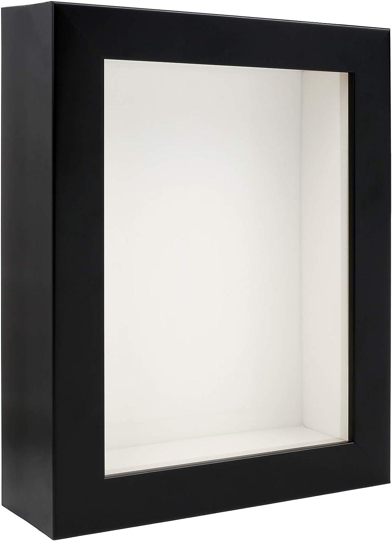 RESTCLOUD Insect Display case Bug Display Shadow Box 8 x 10