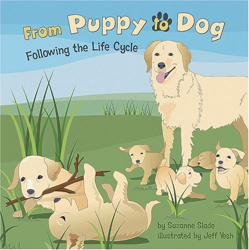 Amazing Life Cycles (From Puppy to Dog: Following the Life Cycle (Amazing Science: Life Cycles))