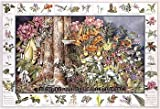 Northwest Woodland Wildflower Poster and Identification Chart