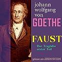 Faust. Der Tragödie erster Teil Hörbuch von Johann Wolfgang von Goethe Gesprochen von: Jürgen Fritsche