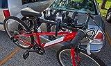 Saris Beam Bike Tube Adapter, Black, One Size