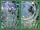 Touhou - Phantasmagoria of Flower View - PC Game