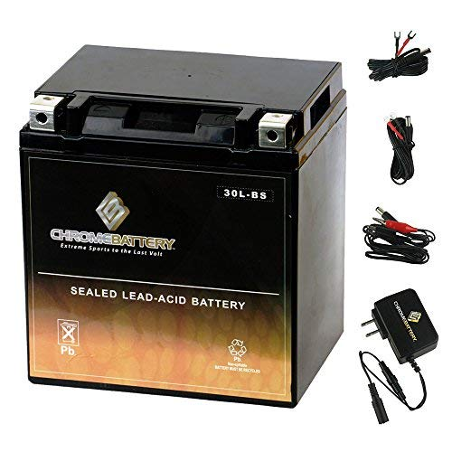 YTX30L-BS Battery with 0.5 Amp Charger - Bundle of 2 items