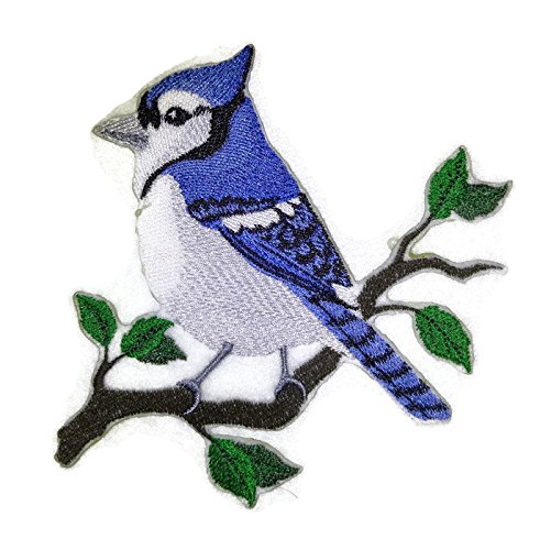 Nature weaved in threads, Amazing Birds Kingdom [Single Blue Jay Bird ] [Custom and Unique] Embroidered Iron on/Sew patch [5