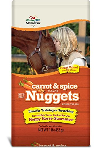 51BZW22Pu6L - Manna Pro Carrot and Spice Trail Size Bite Size Nuggets, 1 lb
