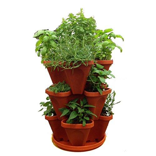 3 Tier Strawberry Planter: Mr. Stacky Self Watering 3 Tier Stackable Garden Vertical