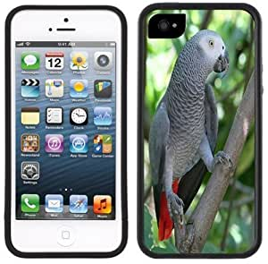 African Gray Parrot Handmade iPhone 5 Black Bumper Plastic Case