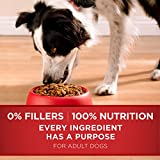 Purina One Smartblend Natural Chicken & Rice