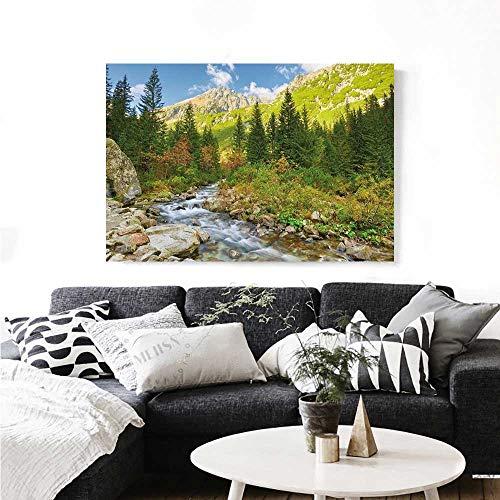 Outdoor Wall Paintings Roztoka Stream Tatra National Park Carpathian Mountains Poland Woods Print On Canvas for Wall Decor 24