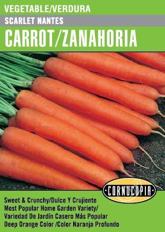 Amazon Com Scarlet Nantes Carrot Zanahoria Spanish English Garden Outdoor También se pueden obtener en los cultivos de las aldeas. scarlet nantes carrot zanahoria