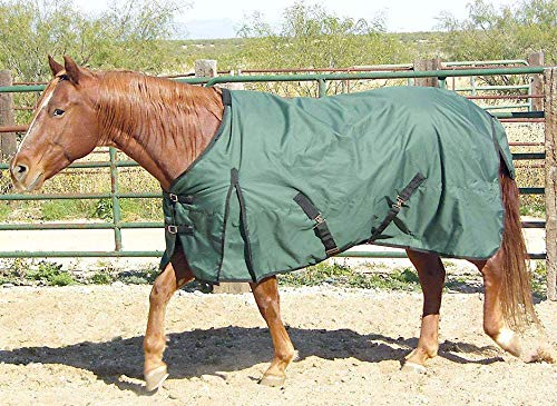 Intrepid International Free Runner Mid Weight Turnout Blanket, 68- Inch, Hunter Green by Intrepid International (Image #1)