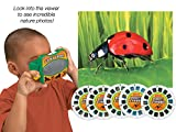 Lakeshore Insects & Spiders Science Viewer
