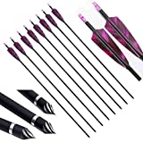 PG1ARCHERY 30 Inch Carbon Arrows with 4 Inch Shield Turkey Feathers Fletching & Removable Points Tips for Archery Hunting Practice Targeting, 6 Pack Purple