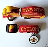 Hunter Iowa State University Pet Combo Set (Collar, Lead, ID Tag), X-Small