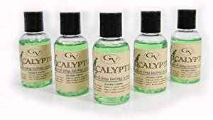 GV 5 Pack Eucalyptus Vacuum Fragrance scents for Rainbow, Rainmate, Thermax, Hyla, Humidifiers 2 fl oz
