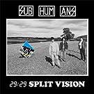 29:29 Split Vision [Vinyl]