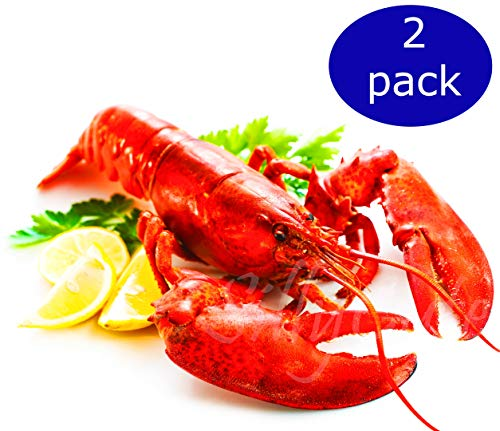- Live Lobsters from Maine, Alive and Kicking, 1.0~1.1 lb each, Pack of 6, Overnight Delivered to Your Door