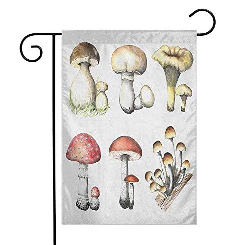 duommhome Mushroom Garden Flag Hand Drawn Fungus Pattern Amanita Muscaria Boletus Champignon Retro Illustration Premium Material W12 x L18 Multicolor ()