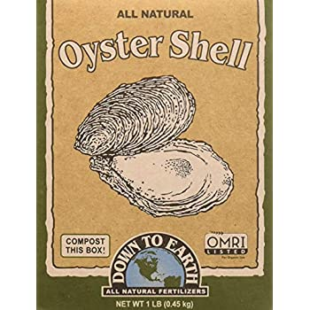 Amazon.com : Down To Earth 6-Pound Oyster Shell Flour