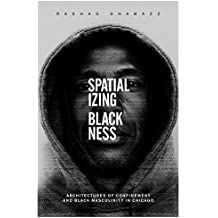 Spatializing Blackness: Architectures of Confinement and Black Masculinity in Chicago (New Black Studies Series)