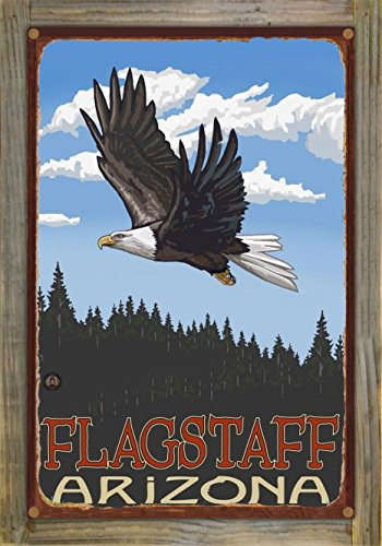 EGSF Flagstaff Arizona Rustic Metal Print on Reclaimed Barn Wood by Paul A. Lanquist (12