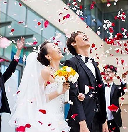 Doitsa 500 PCS Fournitures de mariage D/écoration de mariage d/écoration de salle de mariage d/écoration P/étales de simulation Tissu en soie faux p/étales Rose clair