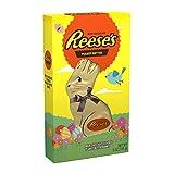 chocolate bunnies - REESE'S Peanut Butter Easter Bunny, 5 Ounce