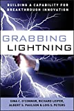 Grabbing Lightning: Building a Capability for Breakthrough Innovation
